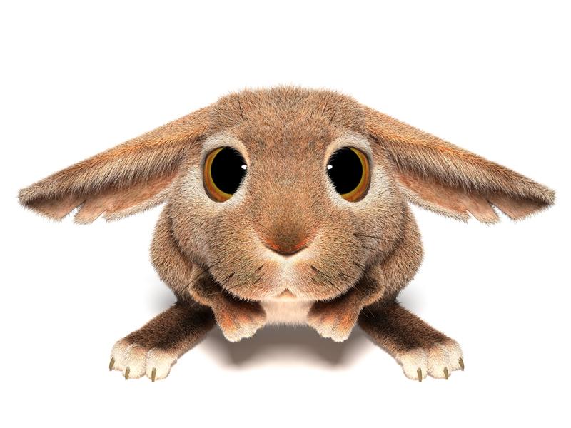 3D Cartoon furry little Easter Bunny looks sad scared eyes