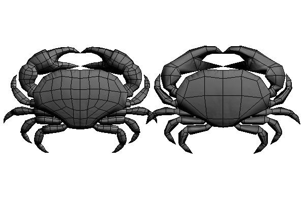 Topology of a 3D model of a crab
